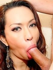 See experience Thai tranny hooker suck and fuck